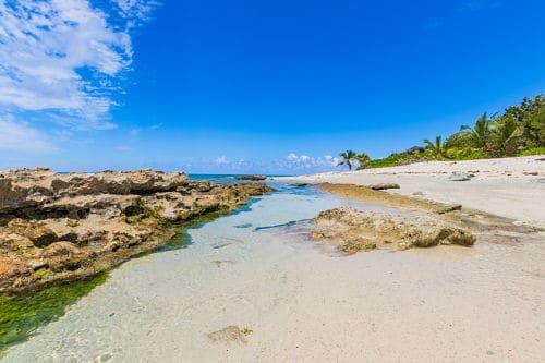 Cayman Tour
