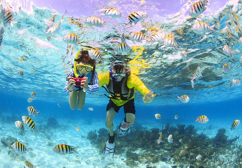 Best Snorkeling Grand Cayman - Things to do in Cayman Islands