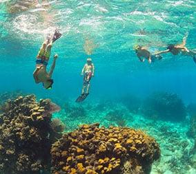 Best Snorkeling Grand Cayman