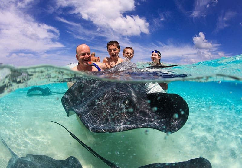 Stingray City Tours - Private Boat Charters