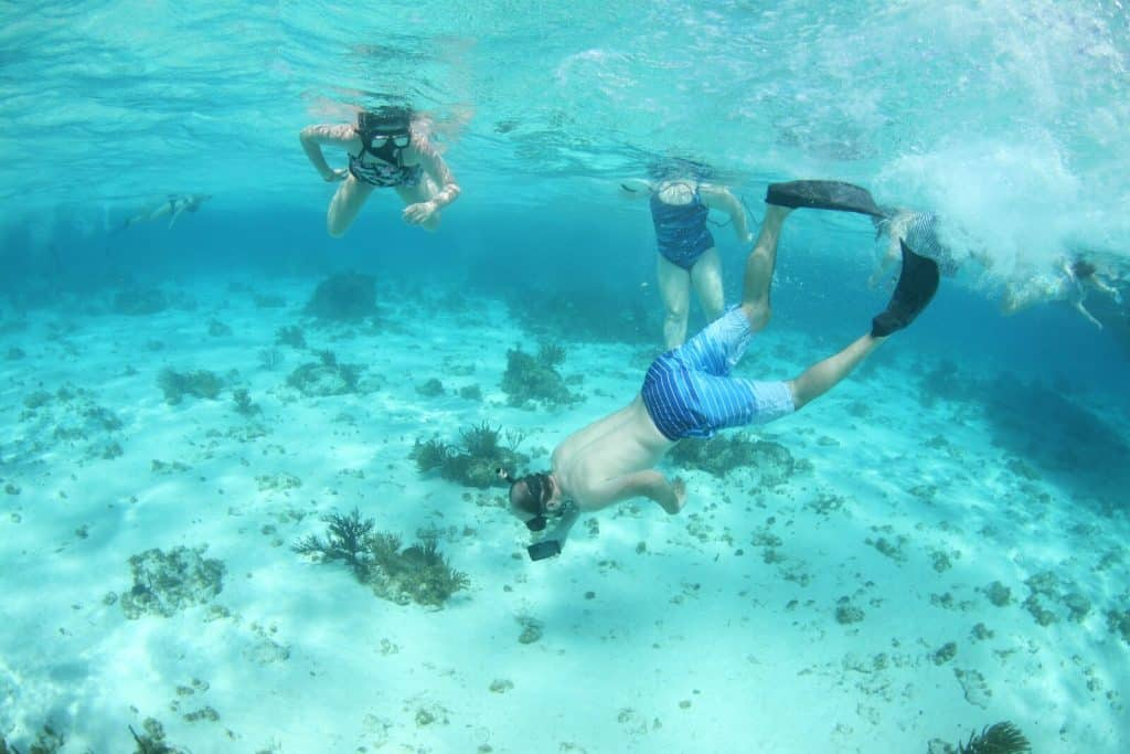 Underwater diving and snorkeling